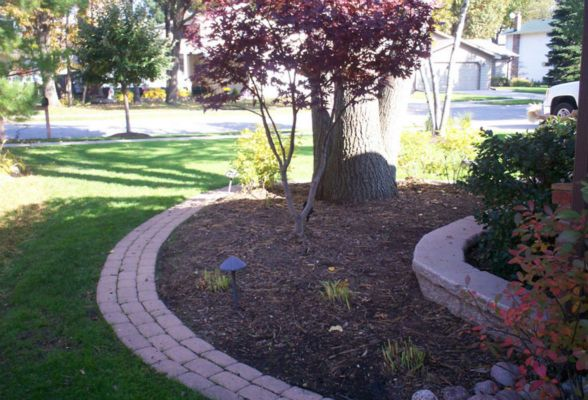Let us improve your existing landscaping