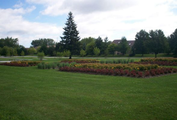 Let us design and install a mass planting to beautify your open space